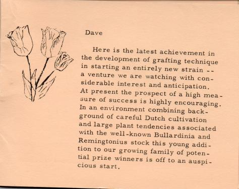 ADG - 1958 Christmas Card - Flower Show - pg. 8