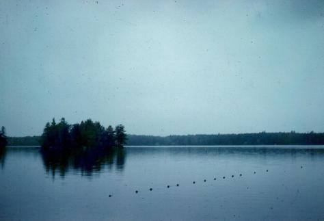 Spring Island - from States Landing @ 1960s