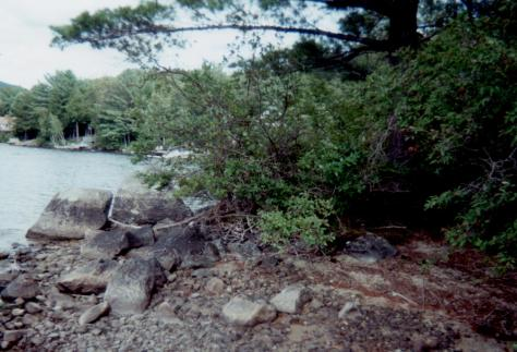 Spring Island - lowest water ever - near baby beach - Aug., 1999 (Judy)