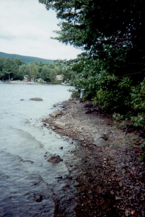 Spring Island - lowest water ever Sandy Beach to States Landing - Aug., 1999 (Judy)