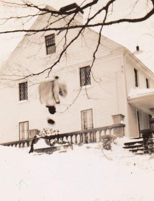 Trumbull House - Blizzard of 1940 - Whirling Dirvish